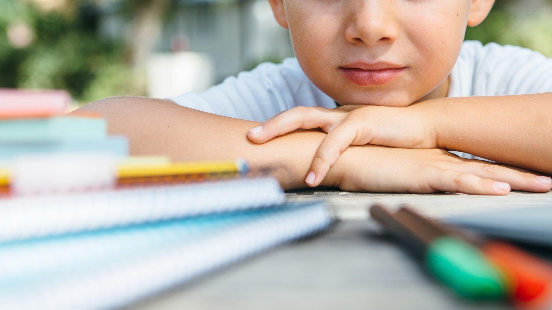 Azzolina scrive alle scuole per recuperare sulla didattica inclusiva